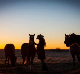 Solitude & Quiet in the Pasture