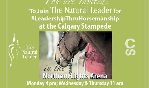 2017 Calgary Stampede